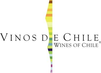 vinos-de-chile[1]