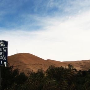Por la Ruta del Pisco deIca
