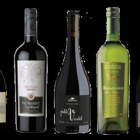 5 vinos de Colchagua que hay queprobar