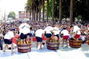 Vuelve la Fiesta de la Vendimia deCuricó