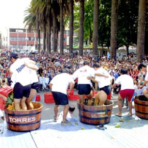 Curicó celebra su Fiesta de laVendimia