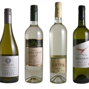4 Sauvignon Blanc de Curicó que hay queprobar