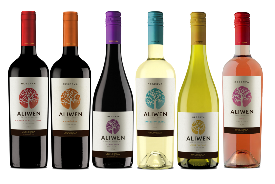 Kết quả hình ảnh cho undurraga aliwen cabernet sauvignon