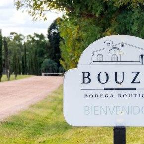 Un día de vinos y turismo en Montevideo (ParteII)
