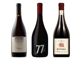3 Pinot de Casablanca para estatemporada