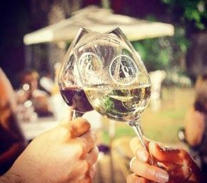 Vuelve la Noche de las Viñas deCuricó