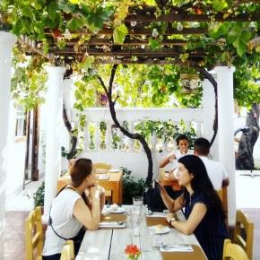 La Jardinera: Puerto Varas en BarrioItalia